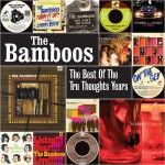 The Bamboos – The Best of the Tru Thoughts Years (Tru Thoughts Records, 27/11/2015)